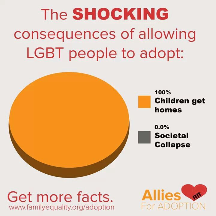 Adoptions by Lesbian, Gay, Bisexual, Transgender, Queer and/or Questioning Families