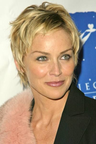 sharon stone hair styles | Hairstyles Gallery - HairBoutique.com Image 8124