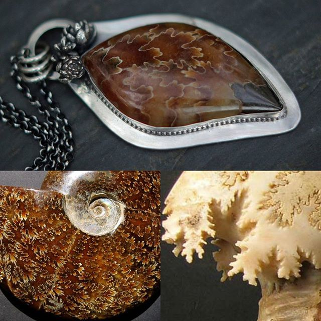 """It's Taxonomy Tuesday again!   Today we learn about Ammonites! . . Ammonites are anextinctgroup of marine molluscs. The guys in the photos are the fossils of The ammonites. The stone in the necklace is cut from an Ammonite fossil and is specifically notable because of the suture marks which resemble maple leaves and thus the stone is often called """"maple leaf ammonite."""" These sutures (you can really see the definition in the bottom right photo) mark where the walls of the chambers meet the…"""