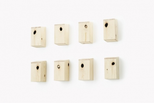 Knot Bird House by Gavin Coyle uses the natural knot in the timber as the entrance hole.