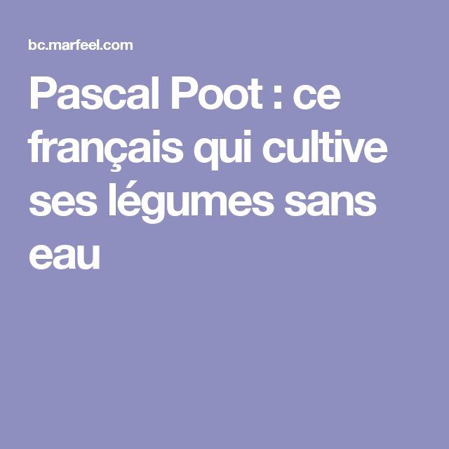 Pascal Poot : ce français qui cultive ses légumes sans eau