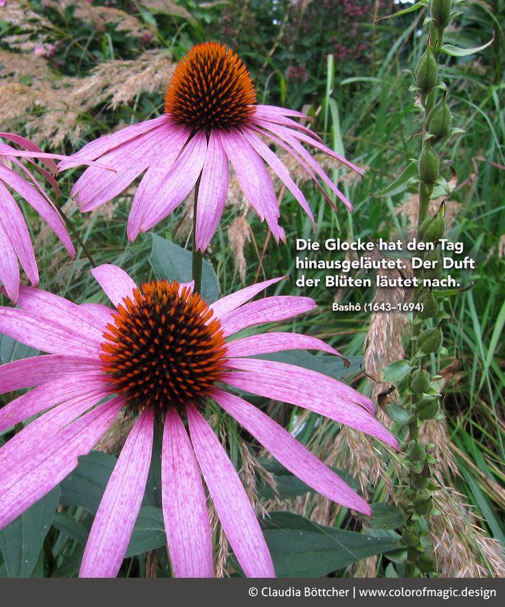 Loki Schmidt Garten: 87 Besten Quotes Bilder Auf Pinterest