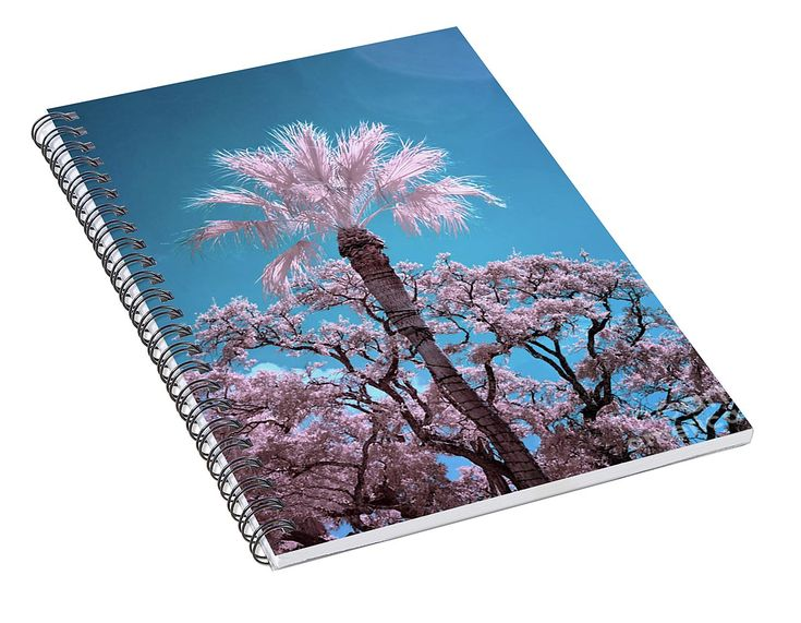 Palm And Live Oaks Spiral Notebook for Sale by Norman Gabitzsch, Houston Photographer. #SpiralNotebook #Notebook #Pad #NotePad #LoraxTree #InfraredPhotography #FalseColor #GalvestonTexas #Galveston #Journal #Diary