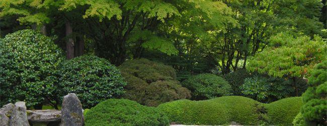 庭園、造園施工管理・庭木剪定