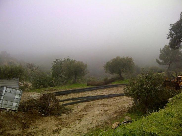 20 januari 2015 Al 2 dagen NIETS kunnen doen op ons project Vale de Sonho Dat is ook Portugal/Algarve. Door zware regen zaterdag is de bodem nog te modderig om het staal op de werkplek beneden te krijgen.  We zijn hier om de eerste beton te zien storten. Live is full of challenges.