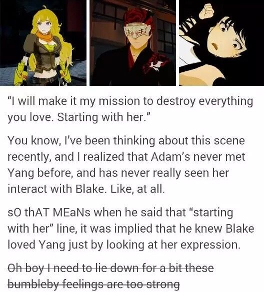 Or, you know, because Yang was outside SCREAMING HER HEAD OFF for Blake and Adam and Blake could both obviously hear her. But you know, whatever floats your ship.