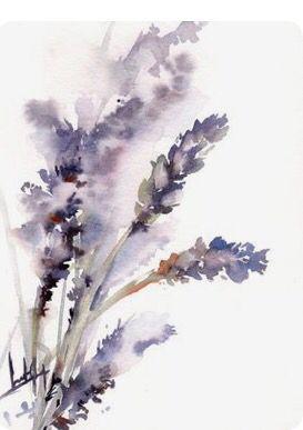 ** Lavender