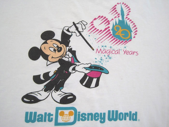Miles From St George Island Florida To Disney World