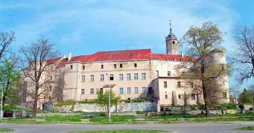 Castle Photo Archive, Jawor, Poland
