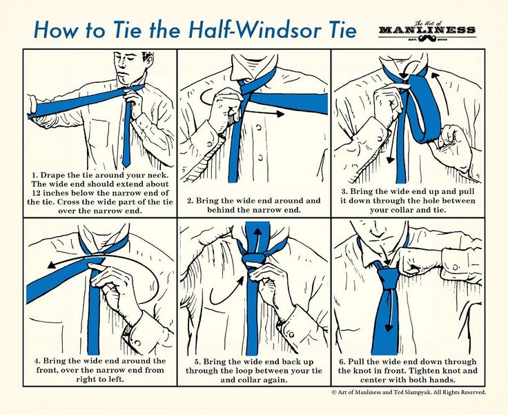 How to Tie a Half-Windsor Knot: An Illustrated Guide   The Art of Manliness