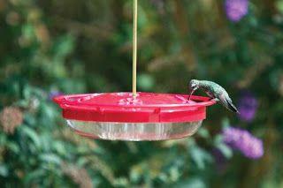 Wild Birds Unlimited: The Best Hummingbird Feeders