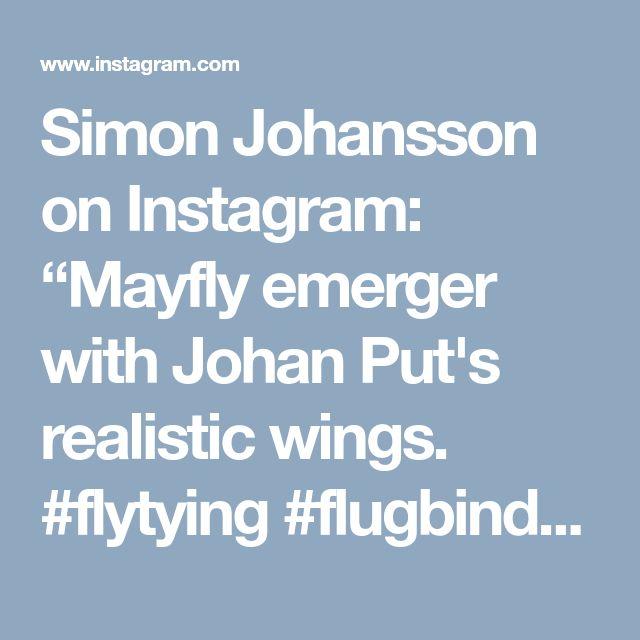 "Simon Johansson on Instagram: ""Mayfly emerger with Johan Put's realistic wings. #flytying #flugbindning #fliegenbinden #fluebinding #barbless #catchandrelease #semperfli…"" • Instagram"