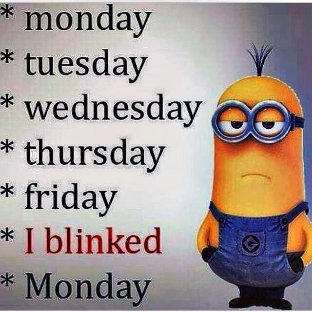 17 Best images about Minion Town on Pinterest | Minion ...