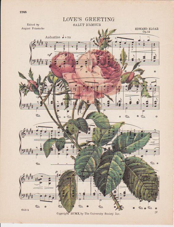valentine rose du chateau noblesse