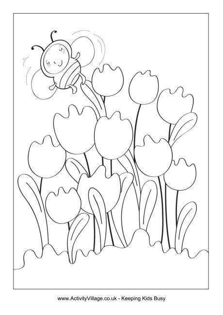 Spring tulips colouring page
