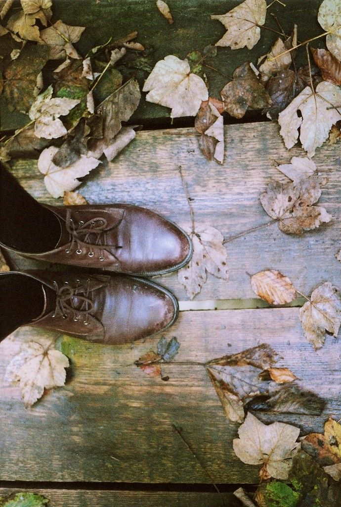 Autumn leaves under foot