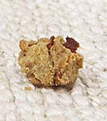 Rachel Ray Homemade Dog Treat Recipes