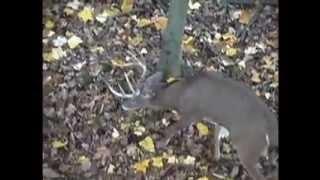 2013 Ohio Deer Hunting Lease Openings Deer Mecca Huntclub Hunting Club, via YouTube.