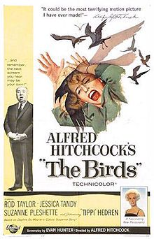 Not my favorite Hitchcock film, but very good. Love Tippi's sea green outfit. Ending scene in attic annoys me. (61/1001)