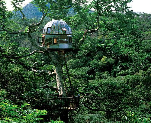 """Beach Rock Treehouse: Okinawa, Japan  This treehouse by Japanese builder Kobayahsi Takashi was constructed with the express purpose of communicating with outer space. """"A sparkling beacon among treetops, it is easy to imagine the dome succeeding at its mission to make contact with alien life,"""" writes Nelson. (via Book preview: 'New Treehouses of the World' — chicagotribune.com)"""