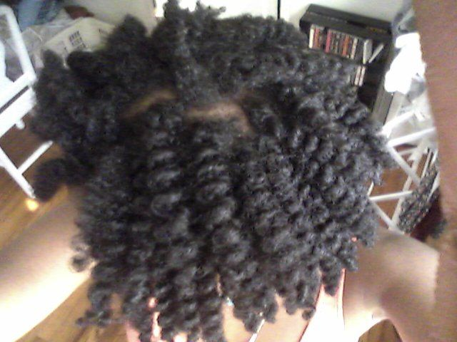 My Favorite Oils Natural Hair Pics Chunky Twist Out Styled With Bringraj Oil