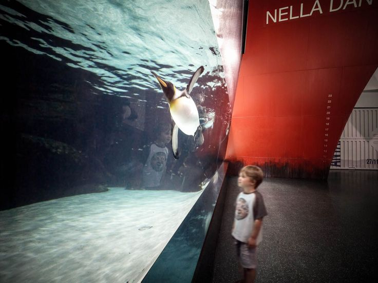 Melbaqua antartica 04