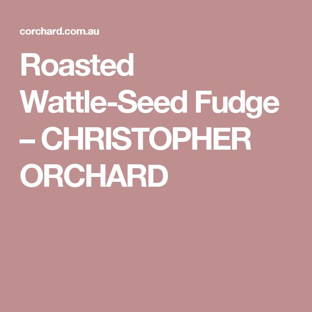 Roasted Wattle-Seed Fudge – CHRISTOPHER ORCHARD