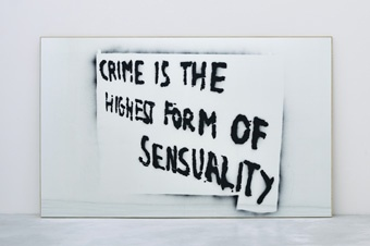 SAM DURANT ALL WORKS / ← BACK / NEXT →[3 / 25] Crime is the Highest Form of Sensuality, 2010