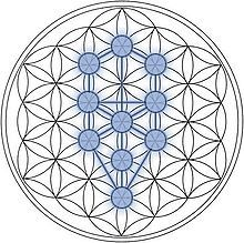 Google Image Result for http://upload.wikimedia.org/wikipedia/commons/thumb/9/94/Tree-of-Life_Flower-of-Life_Stage.jpg/220px-Tree-of-Life_Flower-of-Life_Stage.jpg  --- Great tools for light-workers.. Flower of Life T-Shirts, V-necks, Sweaters, Hoodies  More ONLY 13$ EACH! LIMITED TIME CLICK THE PIC