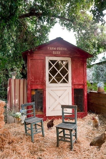 Cute little chicken house, Im diggin on the decor.  and seats!