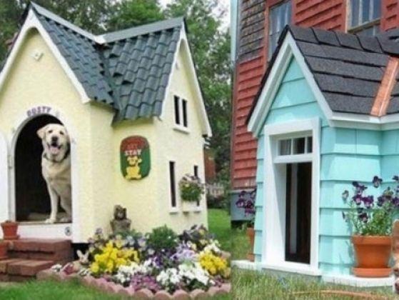 les 118 meilleures images du tableau niches pour chiens et chats design for dogs and cats sur. Black Bedroom Furniture Sets. Home Design Ideas