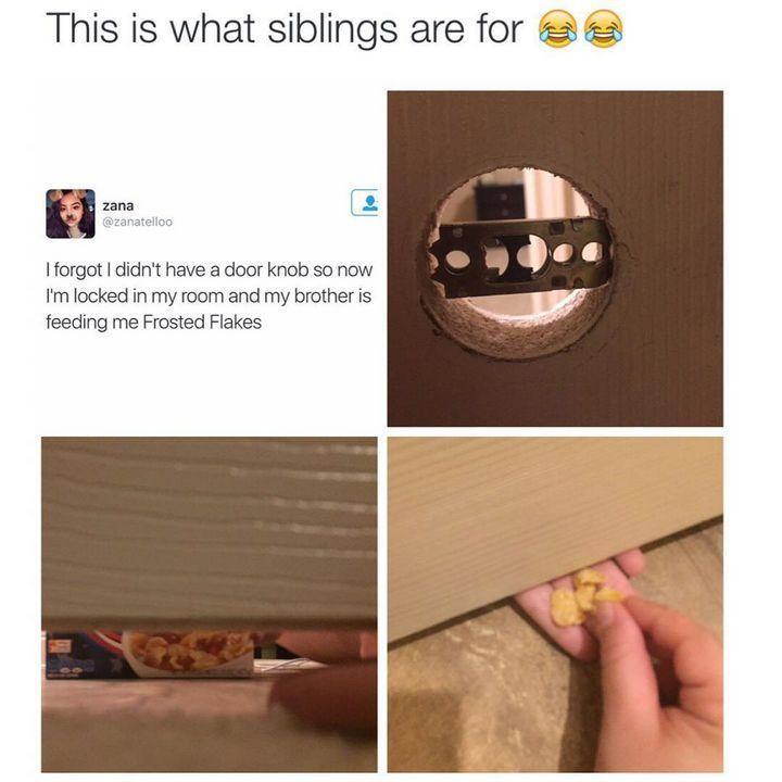 19 Fotos, die nur Sinn machen, wenn Sie mit Geschwistern aufwachsen – #aufwachse