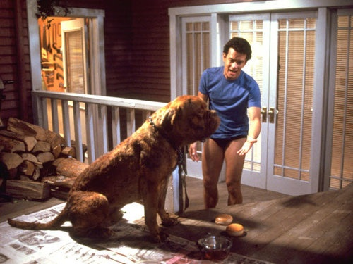 Turner and Hooch (1989)