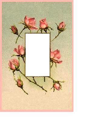 A Frame of Roses