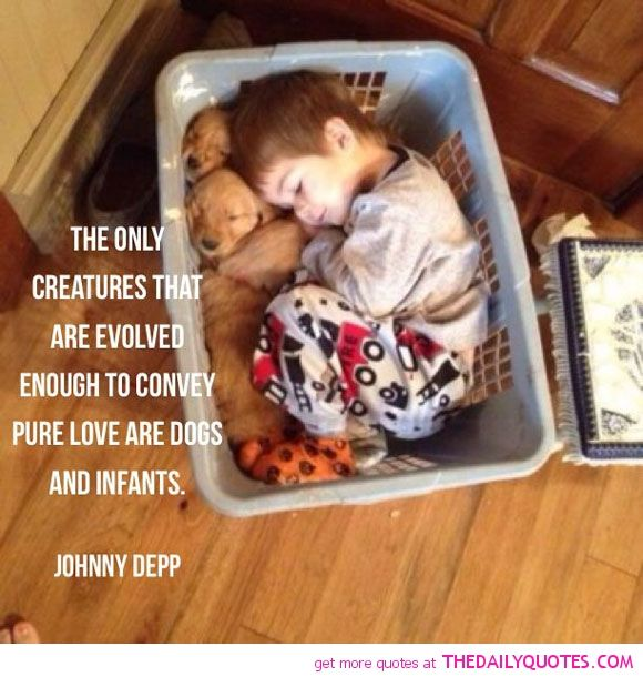 Love Pure Quotes: 301 Moved Permanently