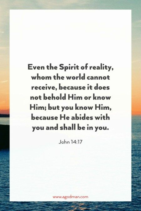 John 14:17 Even the Spirit of reality, whom the world cannot receive, because it does not behold Him or know Him; but you know Him, because He abides with you and shall be in you.