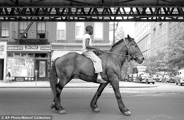 Artistic: A 1954 photograph of a man on a horse titled August 11, 1954, New York, N.Y.