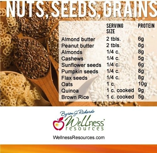 High Protein Foods: Nuts, Seeds, Grains (3/3) | Health ...