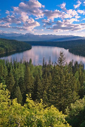 Holland Mountains Landscape | Holland Lake on a summer evening in western Montana's Seeley Swan ...