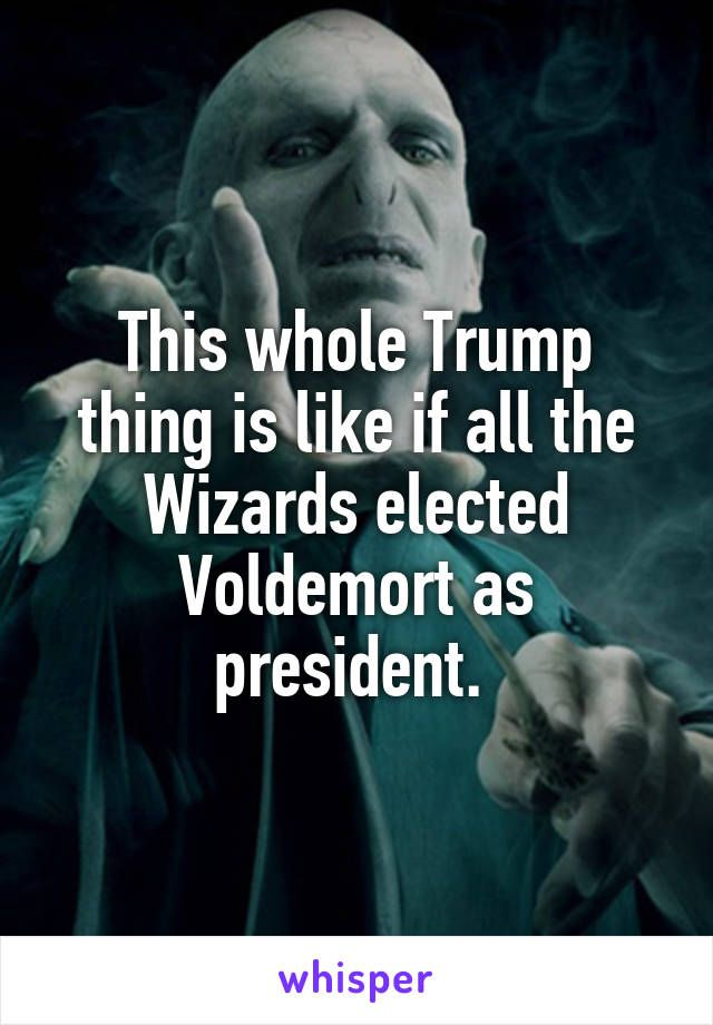 This whole Trump thing is like if all the Wizards elected ...