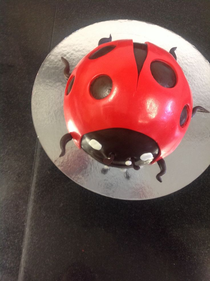 A Lady Bug cake for your sweetie :) #yannpins