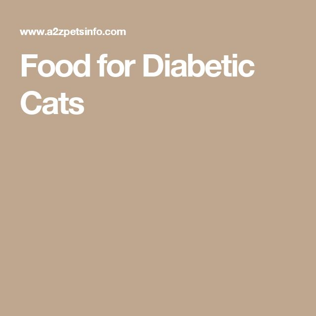 Food for Diabetic Cats