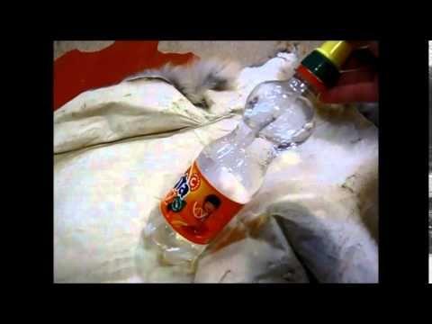 Жилет меховой. Видео курс по работе с натуральным мехом. Часть 1 - YouTube