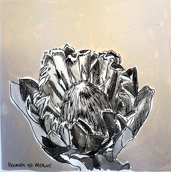 Hermien Van Der Merwe; Title:   Table Mountain Fynbos 7 Medium: Pen-and-Ink drawing on paper with oil paint background Size: 200 x 200mm