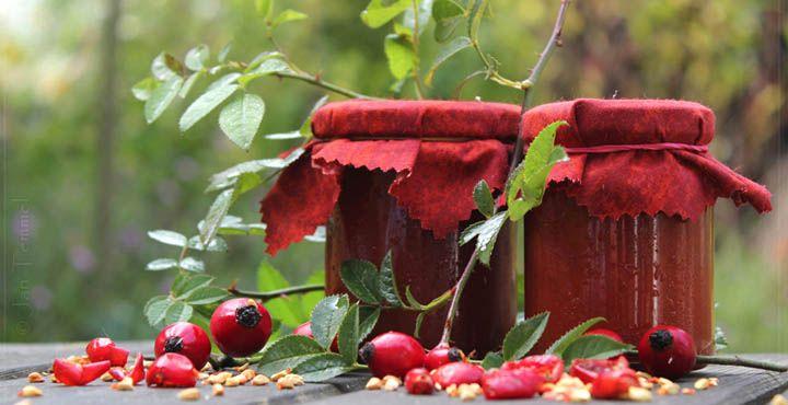 die besten 25 hagebutten rezepte ideen auf pinterest hagebuttenmarmelade hagebutten lik r. Black Bedroom Furniture Sets. Home Design Ideas