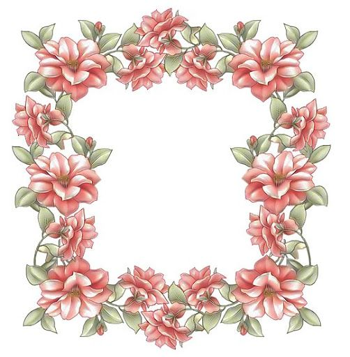 floral frame #clipart #patterns #colored #paintpatterns #designs