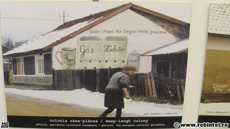 42-dulci-utopii-din-vremuri-vechi-prelinse-petrila-periferia-culturala-europeana-casa-memoriala-ion-desideriu-sarbu-sirbu-i-d-petrila-24-03-2012 | Flickr - Photo Sharing!