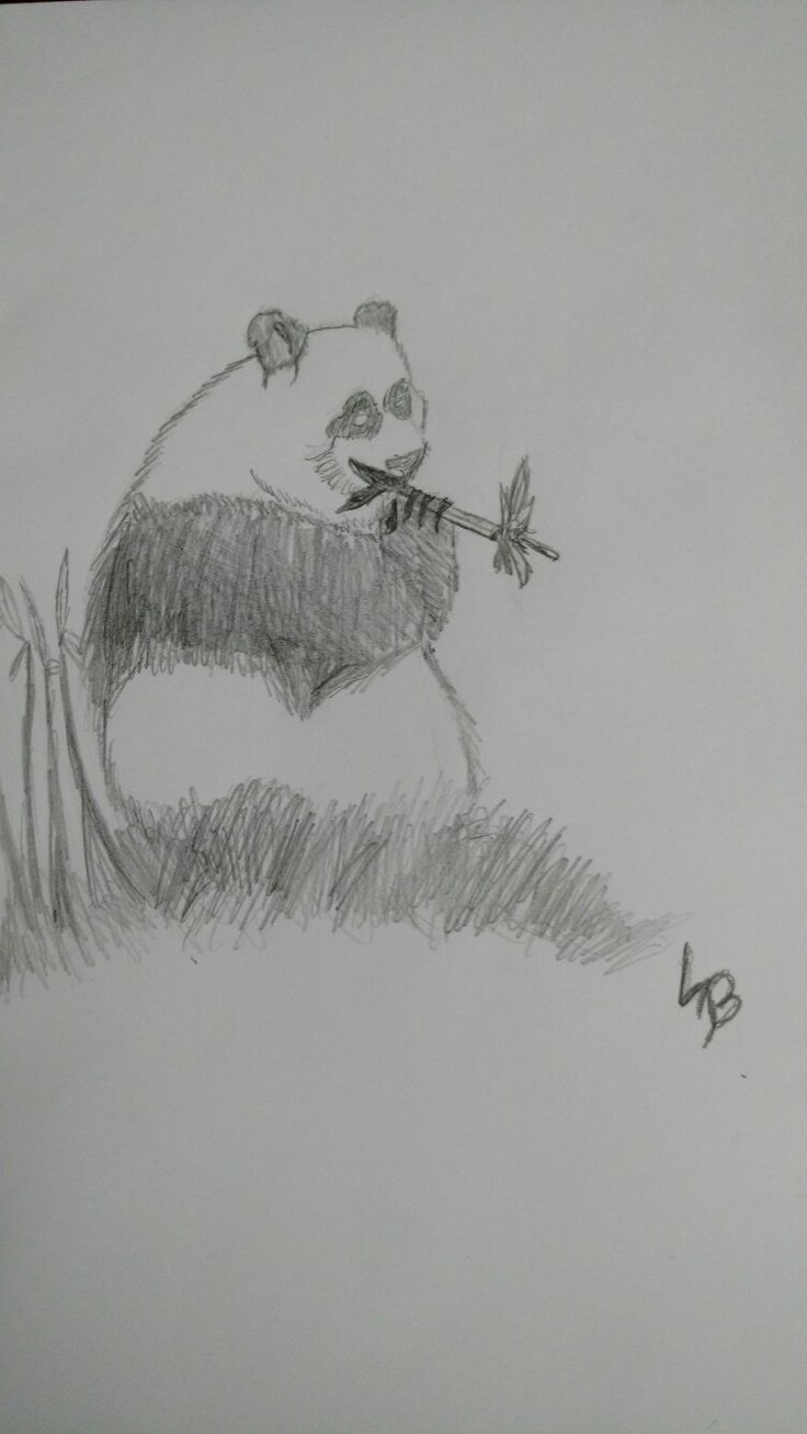 Just a cute panda I did with my new pencils