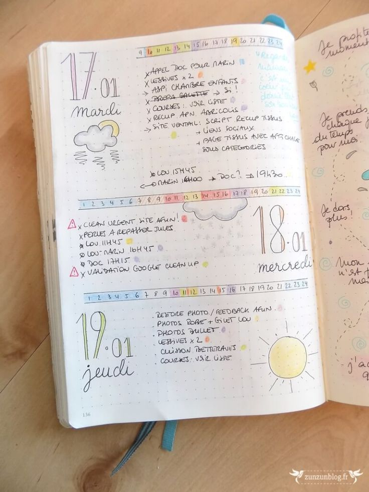 Bullet Journal 2017 Daily Log