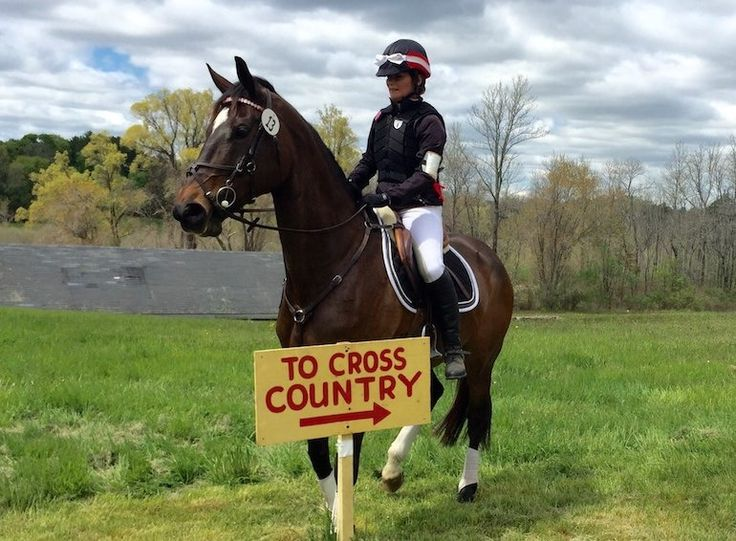 You are never too old to pursue your Eventing goals. But if you plan to do so with a young and athletic horse, you better buckle up...